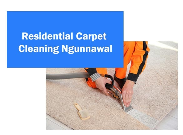 Residential Carpet Cleaning Ngunnawal